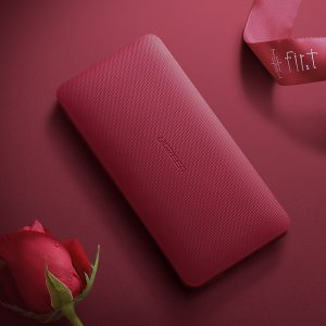 UGREEN 10000mAh MFI Power Bank - Red
